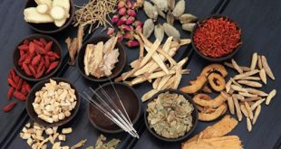 Bài thuốc Đông y trị mụn 3