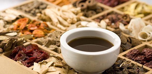 Bài thuốc Đông y chữa xương khớp từ rễ cây xấu hổ
