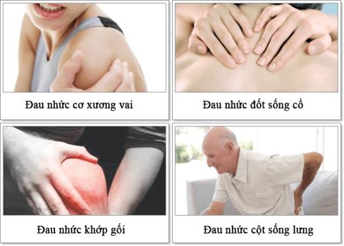 ThuốcGlucosamine sử dụng để điều trị các vấn đề về xương khớp