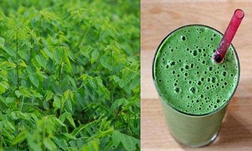 Uống nước rau ngót đem lại rất nhiều lợi ích cho sức khỏe