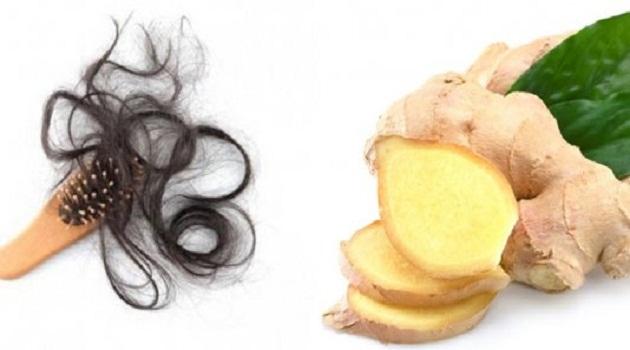 Bài thuốc từ củ gừng tươi giúp cải thiện tình trạng rụng tóc
