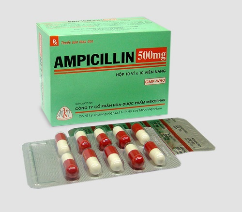 Hàm lượng và dạng thuốc Ampicillin