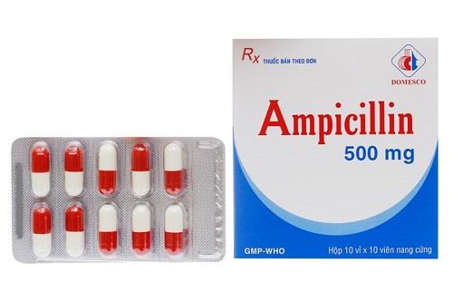 Liều dùng thuốc Ampicillin như thế nào?