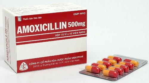 Nên dùng thuốc Ampicillin như thế nào cho đúng?