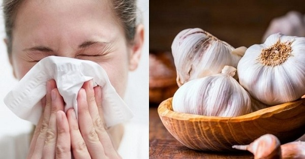 7 loại thực phẩm có tác dụng phòng và điều trị cảm lạnh hiệu quả