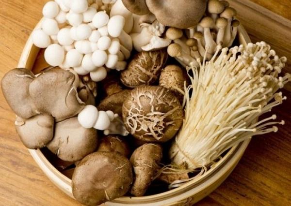 Nấm rơm là thực phẩm có tác dụng phòng và trị cảm lạnh hiệu quả